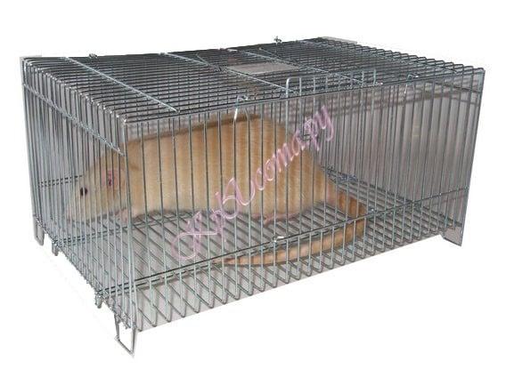 Re: Переноски для крысиков.